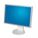 """Monitor 22"""" TFT NEC EA221WM - Grad B"""